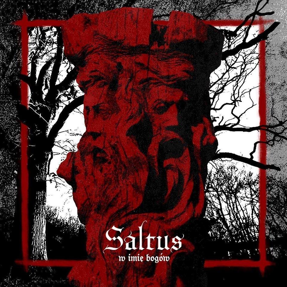 Saltus - W Imię Bogów